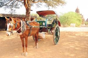 Bagan, verkennen met paar en wagen